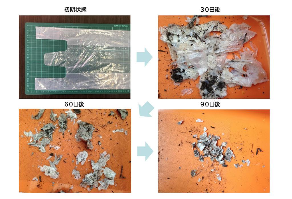 土壌分解性レジ袋の生分解の様子